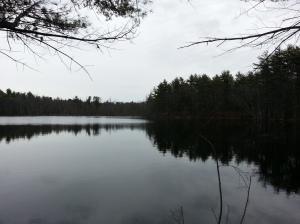 Chaffin Pond, Stetson Photo