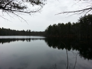 Chaffin Pond, Stetson Photo