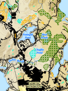 Beginning with Habitat Map of Wetlands, Windham, ME (close-up of Chaffin Pond areas)